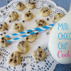 Recipe: Mini Chocolate Chip Cookies