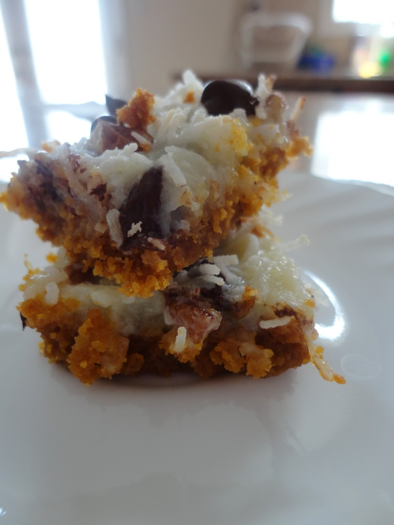 coconut and chocolate chip squares